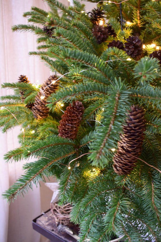 Naturliche Deko Fur Den Weihnachtsbaum Weihnachtsbaumschmuck Basteln Mrs Greenery