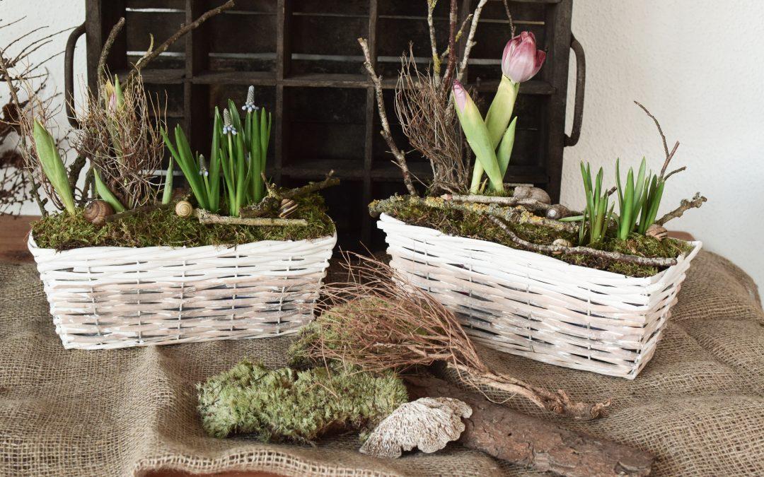 DIY Frühlingskiste