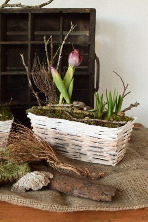Kreativ-Set Frühlingsdeko mit Kiste und Moos zum selber machen DIY