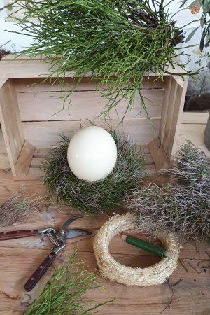 Mit dem Kreativ Set Straussenei Nest Heidelbeere Euphorbia binden selber machen diy mrs greenery