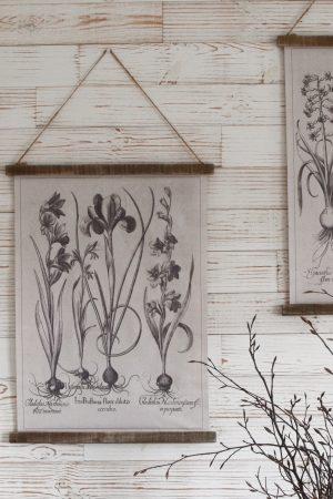 Wandbild Iris Wanddeko botanischer Druck Bild Leinwand Dekoidee Wände Mrs Greenery