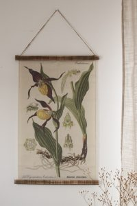 Wandbild Orchidee Wanddeko botanischer Druck Bild Leinwand Dekoidee Wände Mrs Greenery