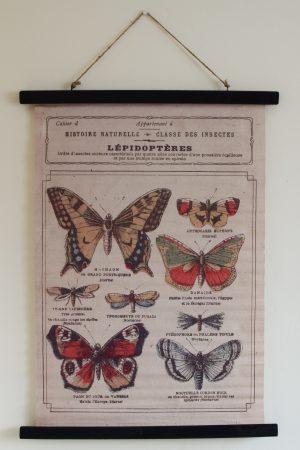 Wandbild Schmetterling Wanddeko botanischer Druck Bild Leinwand Dekoidee Wände Mrs Greenery