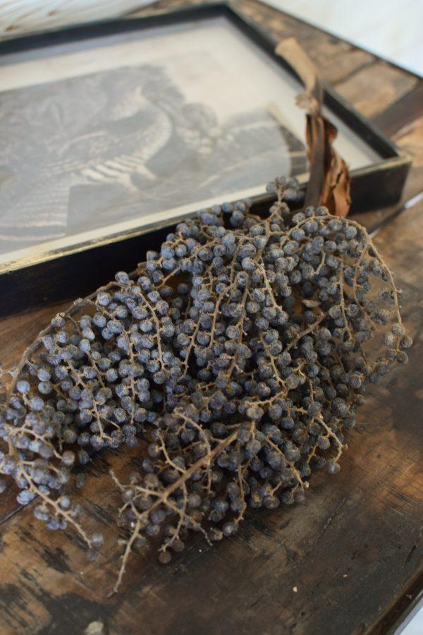 Getrockneter Dattelzweig. Naturdeko für Tisch und Konsole und Sideboard. Natürlich dekorieren mit Datteln.