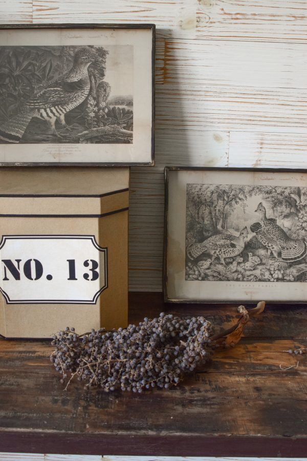 Nostalgisches Bilder Set Fasan. Kunstdruck in Metallrahmen. Antiker Druck Wanddeko Dekoidee