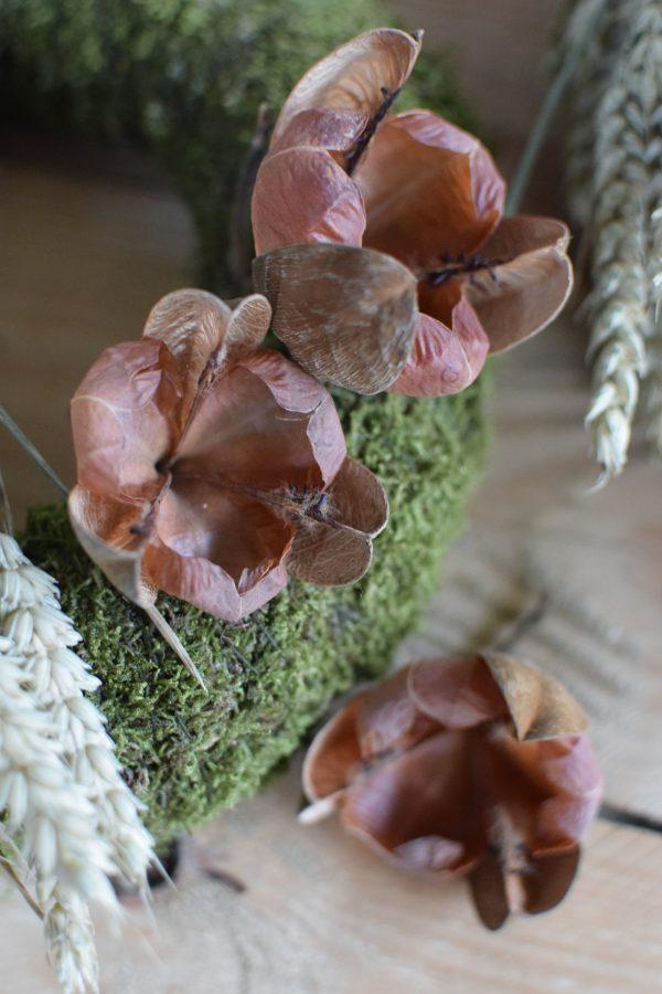 Getrocknete Blüte für deine kreativen Dekoideen. Perfekt für Kränze! Die Blüten sind dauerhaft haltbar
