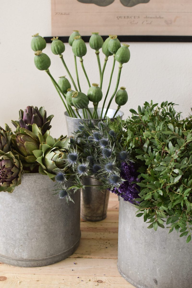 Frisches Greenery vom mrs greenery shop grünmaterial kreativsein