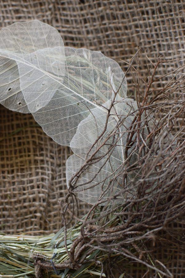 Skelettblätter: getrocknetes Naturmaterial für deine Naturdeko. Basteln Kreativsein Natur Blatt Blätter trocken