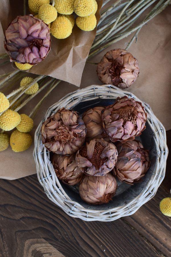 Protea getrocknet eignet sich hervorragend für deine Naturdekoidee. Die Blüten der Protea sind tolle Trockenblumen. Deko Deko mit Naturmaterialien