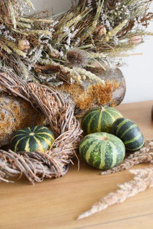 Herbstdeko mit grünen Kürbissen. Der Klassiker der Herbstdeko. Jetzt bestellen! Kürbis