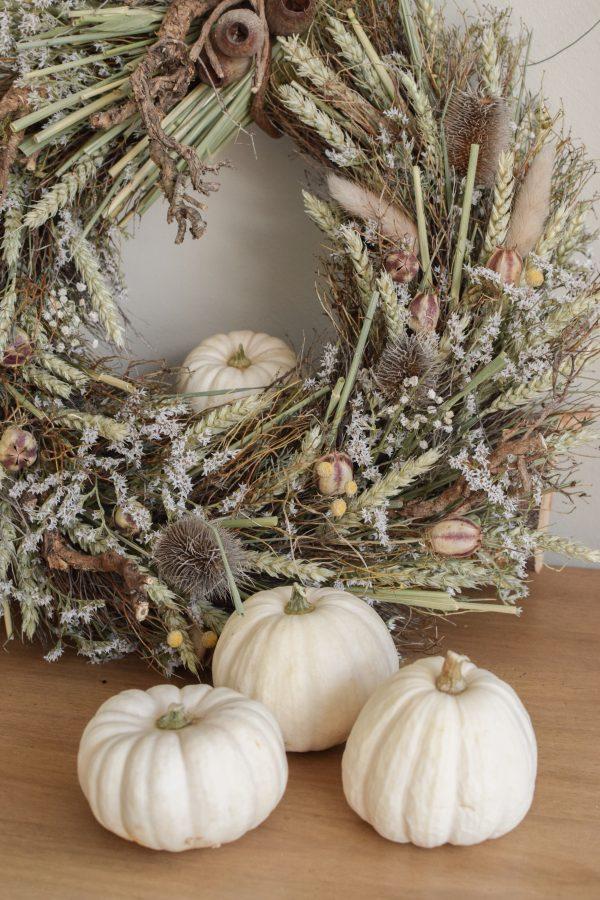 Herbstdeko mit weissen Mini Kürbissen Baby Boo. Der Klassiker der Herbstdeko. Jetzt besellen! Kürbis klein weiss