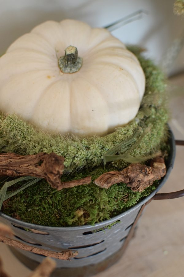 Deko mit Trockenblumen: Borstenhirse getrocknet. Setaria. Kranzbinden Deko mit Naturmaterialien Kürbis Baby Boo Dekoidee Herbst Herbstdeko