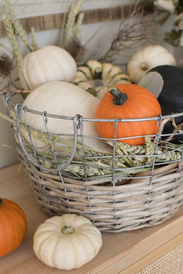 Herbstdeko mit Kürbissen. Der Klassiker. Weiss, orange, grün und schwarz. Dekoidee mit Natur Herbst