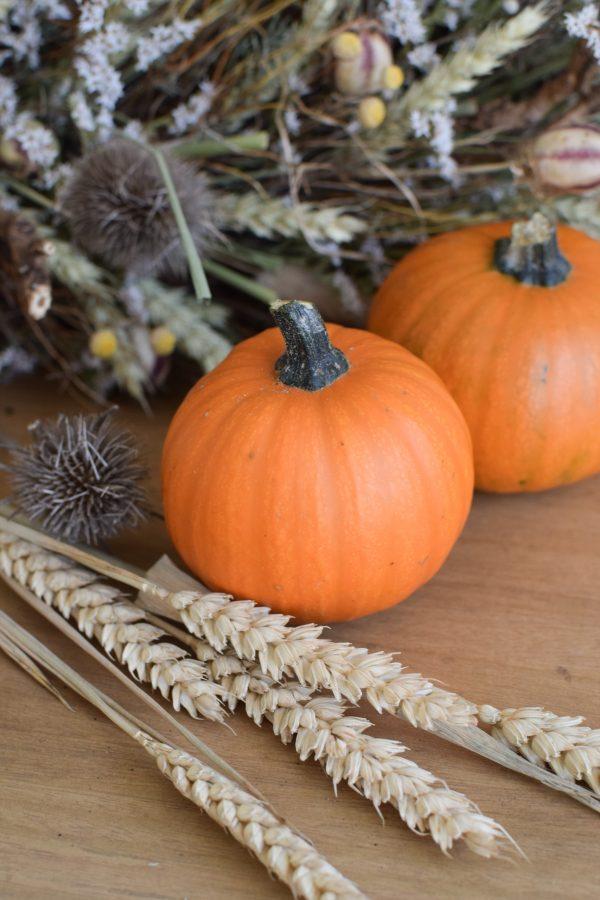 Herbstdeko mit orangen Kürbissen. Der Klassiker der Herbstdeko. Jetzt besellen! Kürbis
