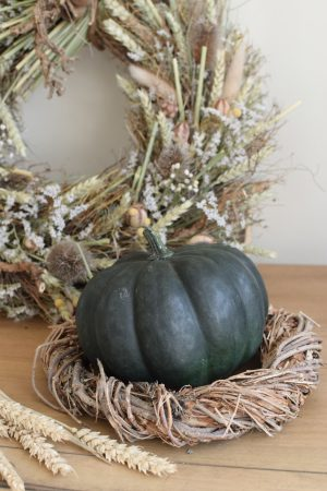 Herbstdeko mit dunkeln Kürbissen. Die besonder Herbstdeko. Jetzt bestellen! Kürbis
