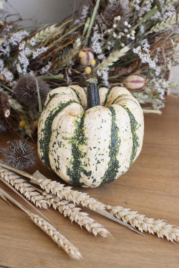 Herbstdeko mit weiss gürnen Kürbissen. Der Klassiker der Herbstdeko. Jetzt besellen! Kürbis