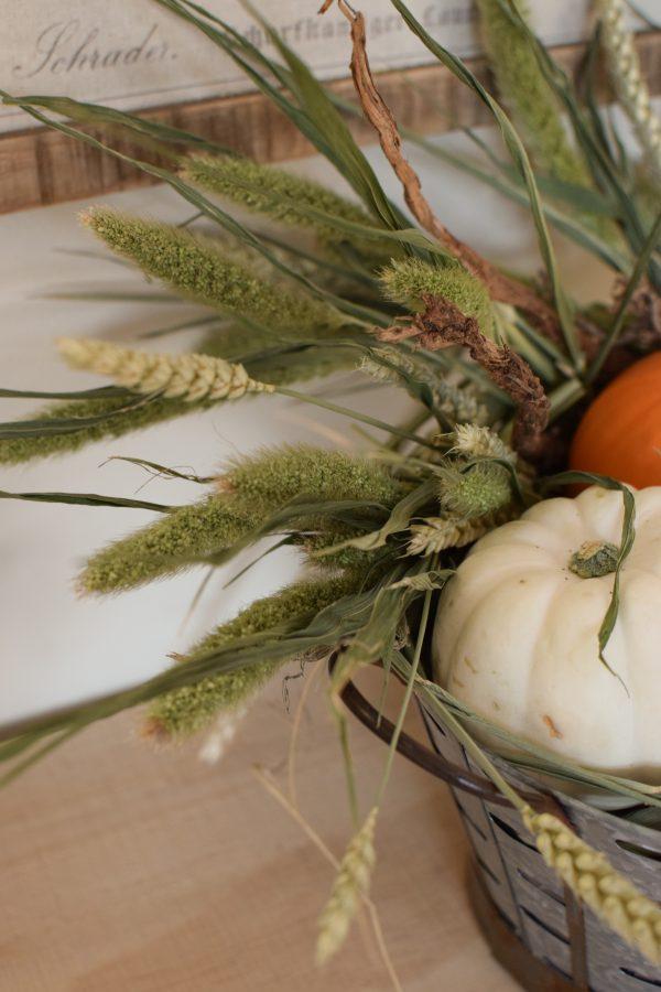 Deko mit Trockenblumen: Borstenhirse getrocknet. Setaria. Kranzbinden Deko mit Naturmaterialien Kürbis Baby Boo Dekoidee Herbst Herbstdeko Weizen