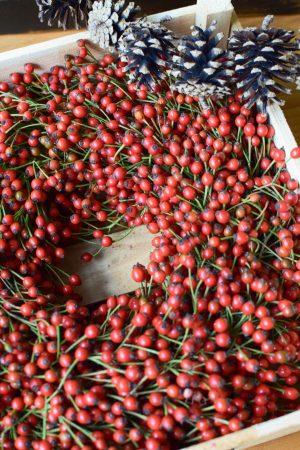 Hagebuttenkranz fertig gebunden für deine Winterdeko Weihnachtsdeko herbstdeko. Durchmesser 30 cm. Trocknet wunderschön ein.