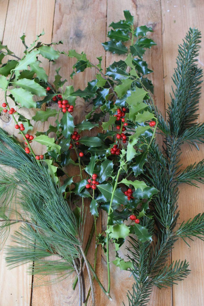 Ilex grün mit Beeren, Nordmanntanne, Kiefer. Weihnachtsgrün Wintergrün Bund Deko Weihnachten Advent Winter natürlich Kreativsein kreativ