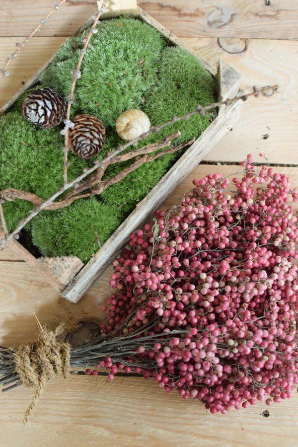 Rosa Pfefferbeeren kaufen bei Mrs Greenery: Ein Bund getrocknet. Für deine kreativen Naturdekos. Kreativsein mit Naturmaterialien Trockenblumen
