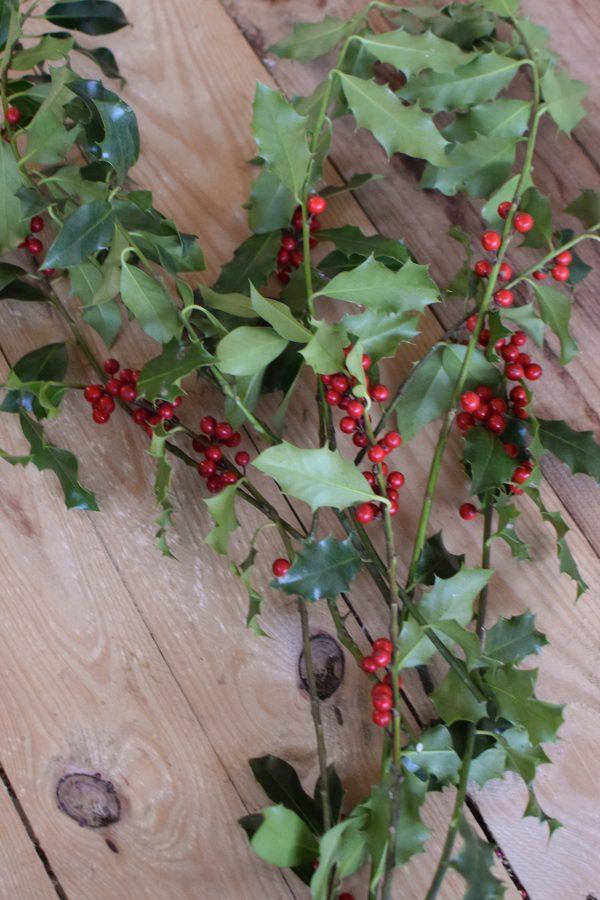 Ilex mit roten Beeren grün Wintergrün Bund Tannengrün Kranz Kränze binden Weihnachtsgrün Deko