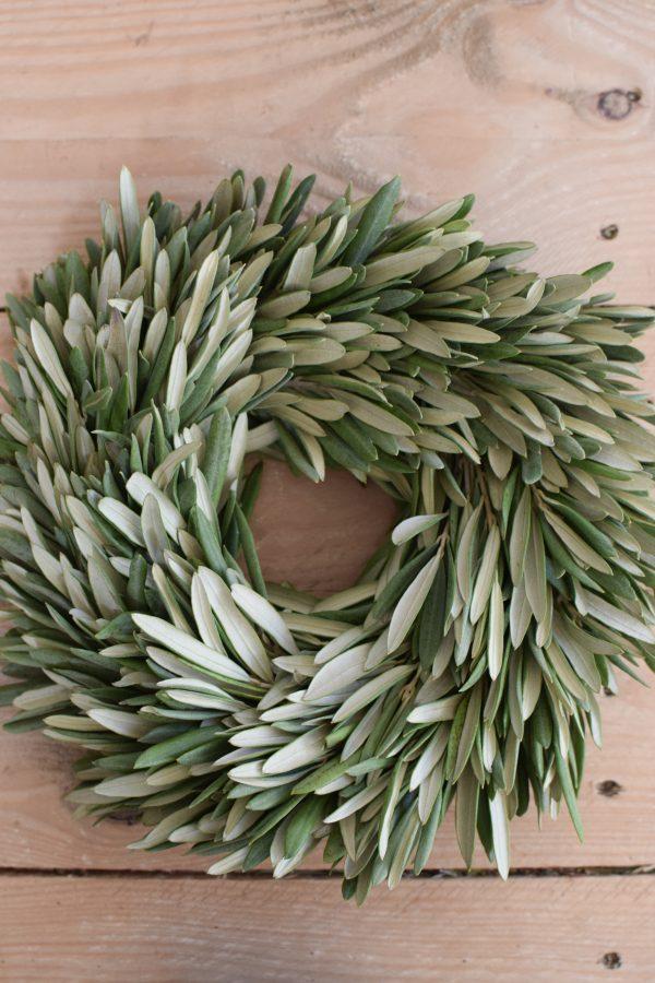 Mini Olivenkranz Kranz Olivenblätter Olive Winterkranz Dekokranz Weihnachtskranz