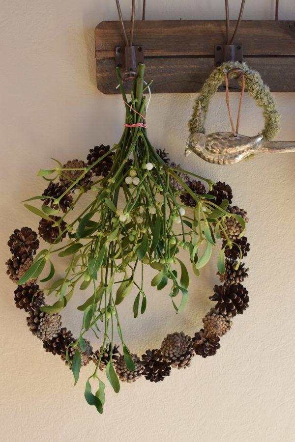Mistelzweig für deine Winterdeko Weihnachtsdeko Mistel Mistel Bund