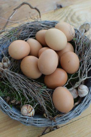 Hühnerei Osterei Ei Eier braun ausgeblasen Osterdeko Ostern naürlich dekorieren