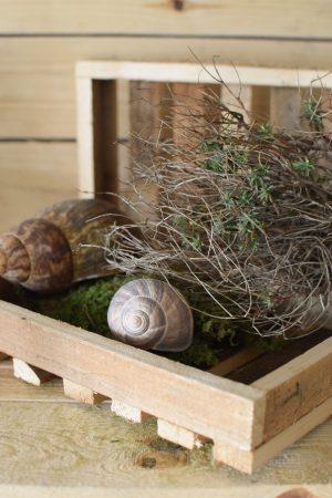 Mini Holztablett Dekotablett Holzdeko Naturdeko Tablett