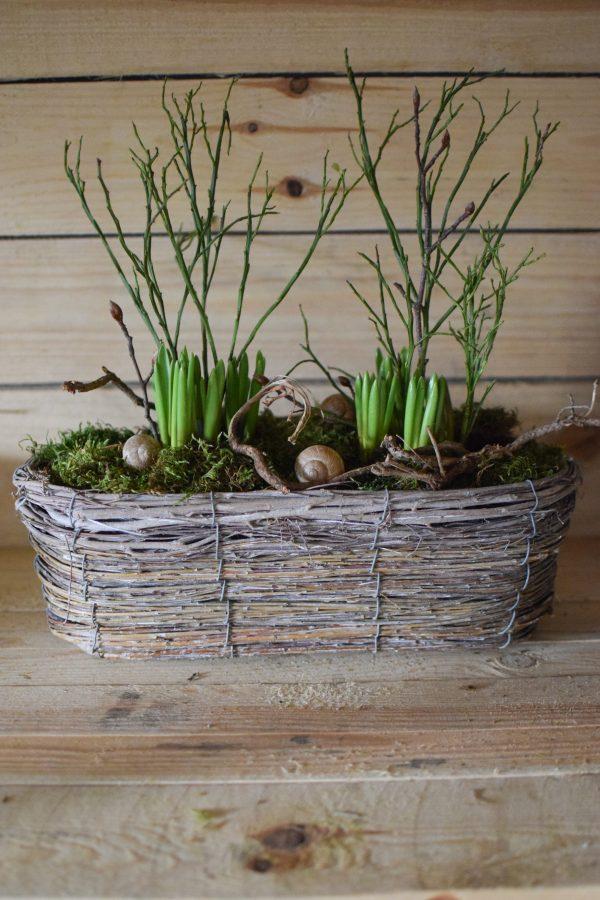 Pflanzschale für deine Naturdeko. Natürlich dekorieren Dekoidee Schale