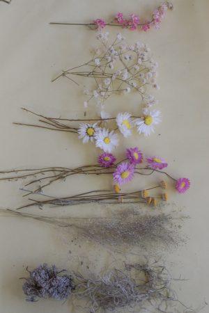 Trockenblumen für Workshop Florales Osterei