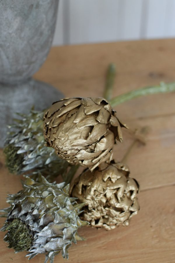 Artischocke getrocknet grün goldig Trockenblumen Artischocken trocken