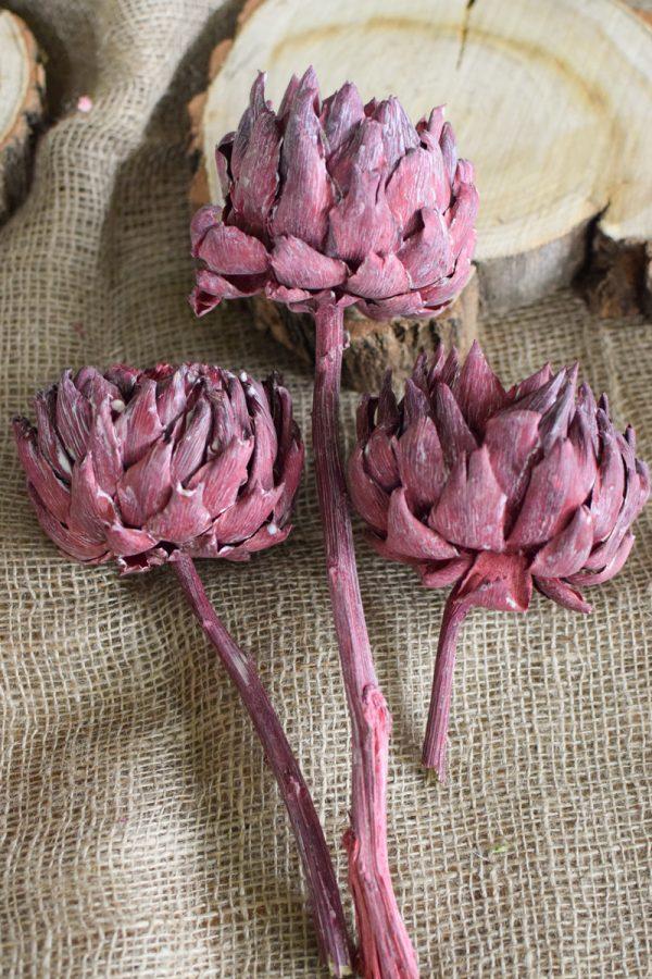 Artischocke getrocknet brombeer Trockenblumen Artischocken trocken trocknen Naturdeko Deoidee