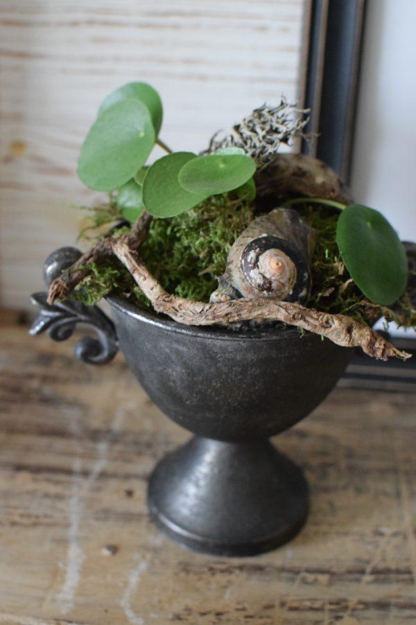 Pokal Kelch Metall Deko Dekoidee Vintage dekorieren mit Natur Pflanztopf Mrs Greenery Shop