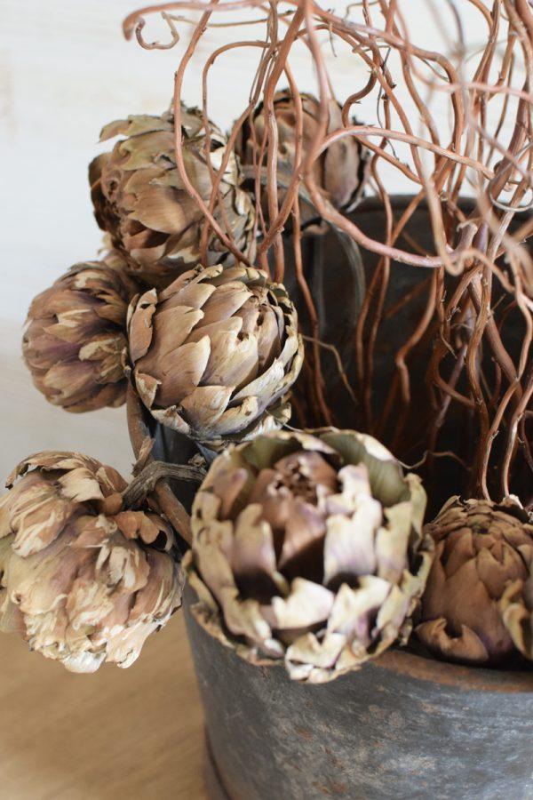 Artischocke getrocknet natur Trockenblumen Artischocken trocken trocknen Naturdeko Deoidee Artischockenköpfe