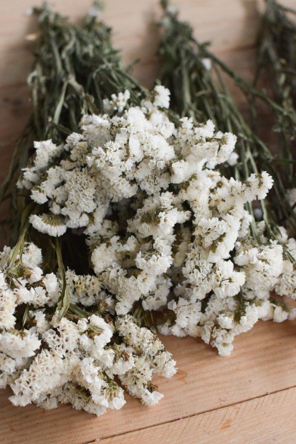 Statice Strandflieder fluffig getrocknet Trockenblumen Kreativsein mit Meerlavendel weiß aus dem Mrs Greenery Shop