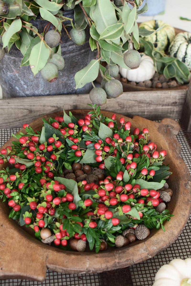 Kranz Herbstkranz Selberbinden Kranz. Kranzbinden mit Hypericum rot ein Bund. Ganz frisch für deine Herbstdeko. Deko mit roten Beeren vom Mrs Greenery Shop. Johanniskraut bestellen