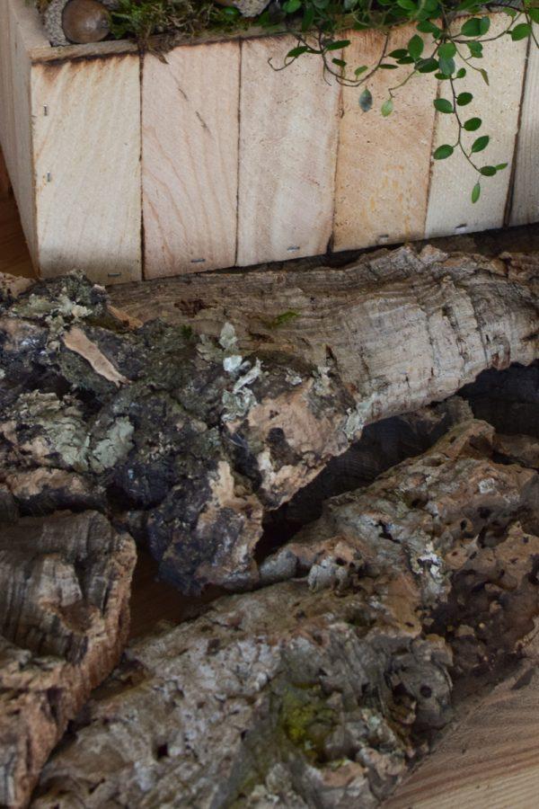 Dekorinde Rinde getrocknet Naturdeko Dekoidee im Mrs Greenery Shop bestellen