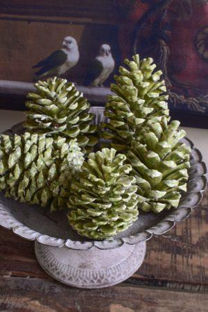 Gewachste Zapfen in grün. Wachszapfen für deine Weihnachtsdeko Weihnachtszapfen Adventszapfen. Weihnachten natürlich dekorieren, Mrs Greenery Shop bestellen