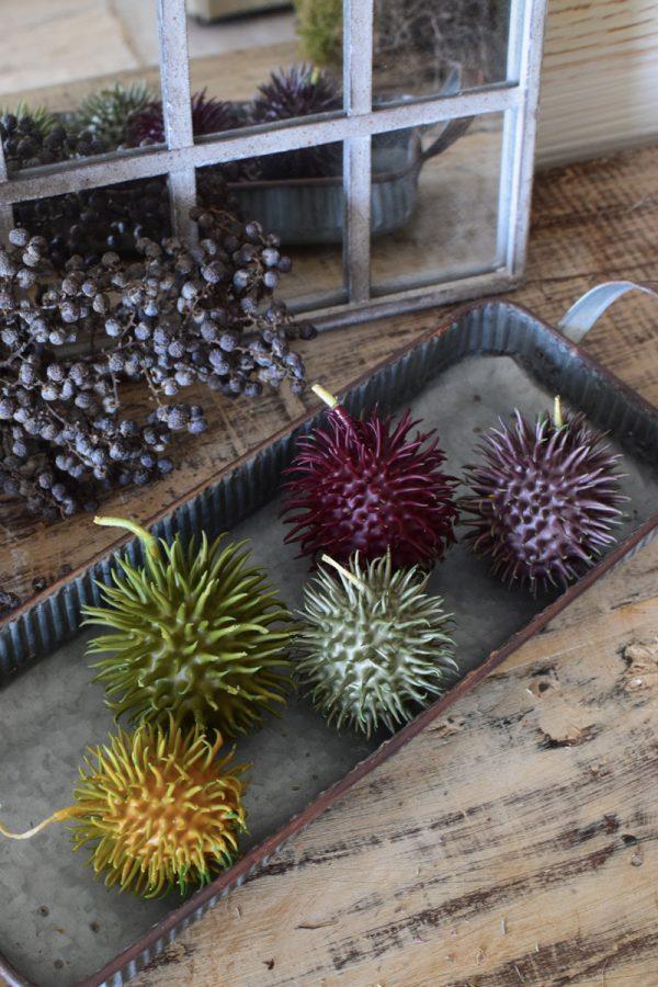 Cucumi Cucumis Ziergurke gewachste Naturdeko natürlich dekorieren. in pastellfarben Herbstdeko Winterdeko im Mrs Greenery Shop bestellen