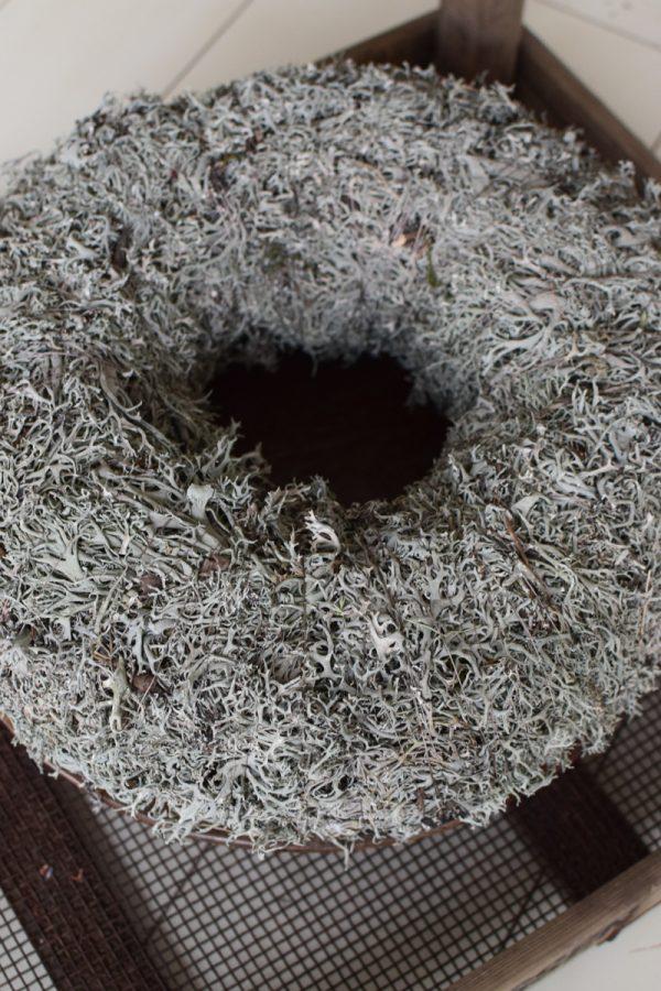 Flechtenkranz groß: 40 cm Durchmesser. Fertigkranz. Kranz aus Flechten gebunden. Winterkranz Fertigkranz Kränze im Mrs Greenery Shop bestellen