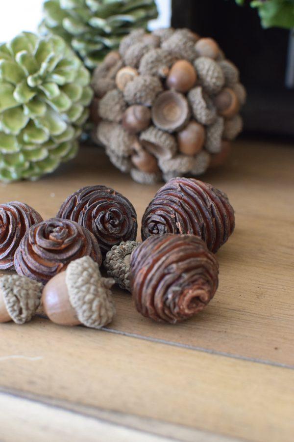 Platyspermum Spiralzapfen Herbstdeko Weihnachtsdeko Zapfen getrocknet im Mrs Greenery Shop bestellen